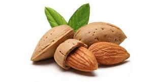 آجیل خشکبار چیست  ارزش غذائی و فواید  و میوه خشک اطلاعات جامع و کاملی درباره آنها